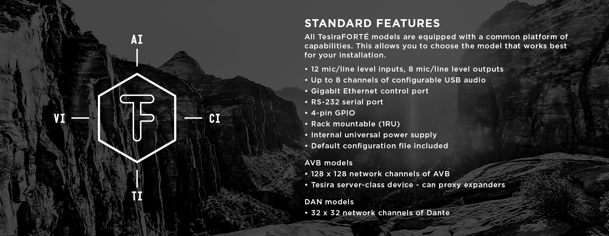 Standard Features on all TesiraFORTE models